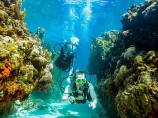 Scuba at Sandals and Beaches