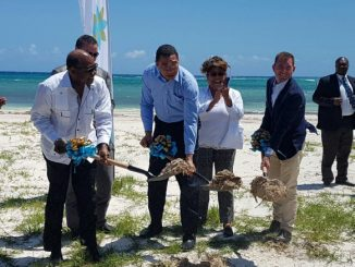 Excellence Oyster Bay Breaking Ground