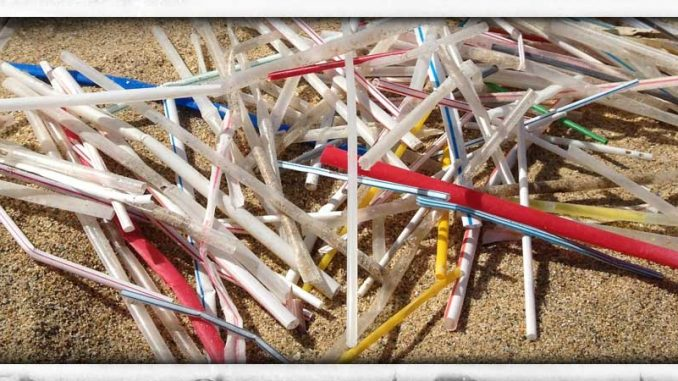 Straws collected on 1 mile of beach in Puerto Rico
