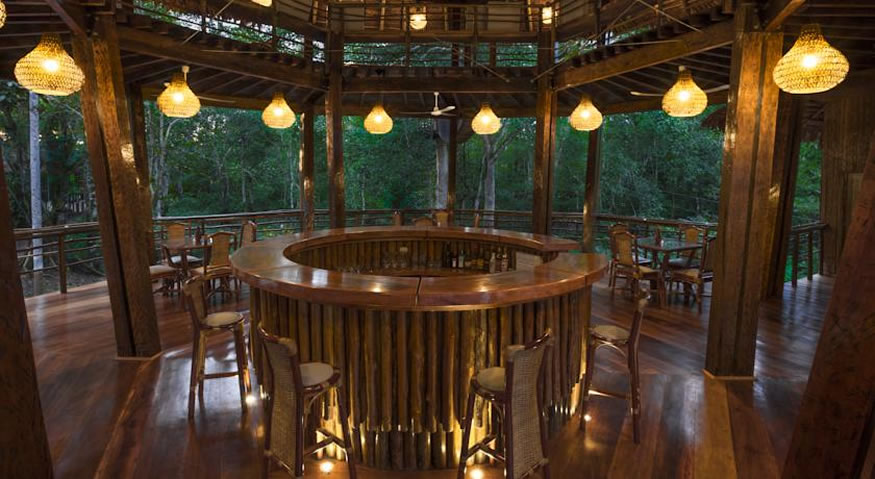 On our list of best all inclusive resorts in South America is Treehouse Lodge