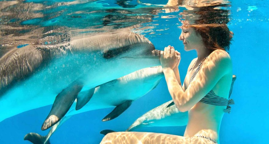 Swimming with dolphins at Grand Bahia Principe Tulum